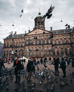People feeding birds at central square