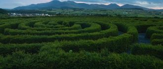 What does it mean to dream of mazes