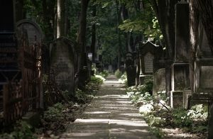 An old cemetery with tombstones