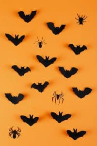 Bats are a popular decoration for Halloween